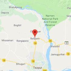 Assam: Speeding train kills five elephants crossing tracks to find food