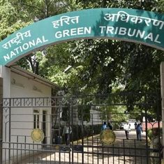 No trees to be cut at Pragati Maidan without nod for redevelopment work: Delhi government tells NGT