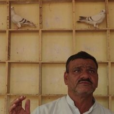 Watch: Meet the man from Delhi who is determined to continue the tradition of pigeon-racing