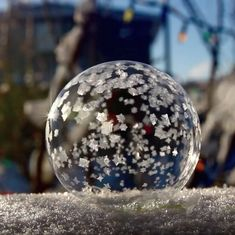 Watch: Bubbles freezing in cold temperatures might be the best thing the world sees this winter