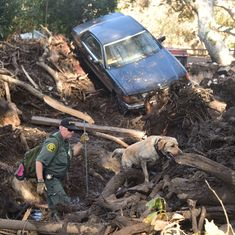 United States: At least 20 dead in California mudslides