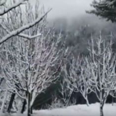 Watch: Shimla, Manali and Vaishno Devi look beautiful covered in snow