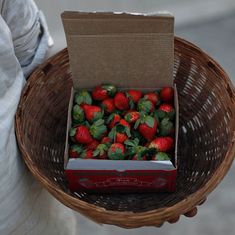 Farmers in a part of Bihar are turning to strawberry cultivation to find sweet returns