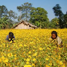 Arunachal Pradesh gives individuals ownership of land but will they really benefit from it?