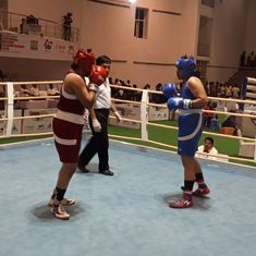 Haryana pugilists dominate youth nationals as seven from state advance to semis
