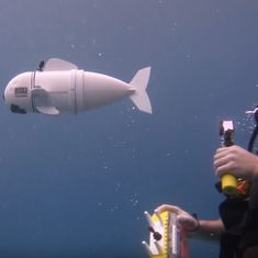 MIT has sent in its best agent to explore the undersea world: Watch Soft Robotic Fish in action