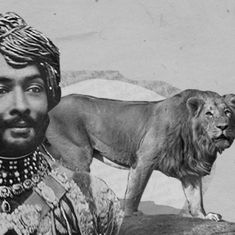 Video: Gir became the last refuge of the Asiatic lion thanks to the Nawab of Junagadh
