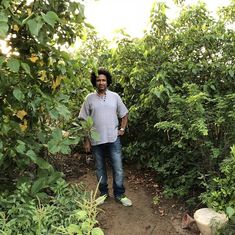 By growing forests in the heart of the city, an entrepreneur is trying to cool Karachi down
