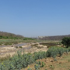 Plan to revive Jharkhand dam with bloody past poses threat to people, wildlife