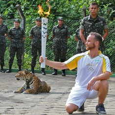 Watch: This jaguar was shot after it escaped an Olympic Torch event in Brazil