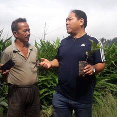 Farmers in Darjeeling's tea hub are all set to offer a fresh new brew – organic coffee