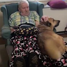 Watch: This man was suffering from Alzheimer's Disease. The dog he rescued came to his rescue