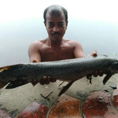 Experts called in after angler catches dangerous alligator fish from Kolkata lake