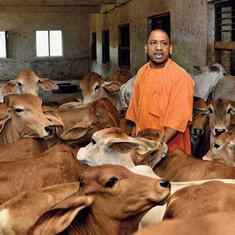 आदित्यनाथ सरकार द्वारा 25 हजार गायें उत्तराखंड को बेचे जाने सहित आज की प्रमुख सुर्खियां