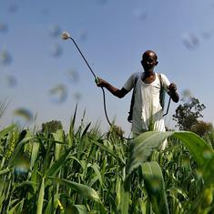 Agriculture is a big contributor to greenhouse gas in India. A study finds a way to fix that