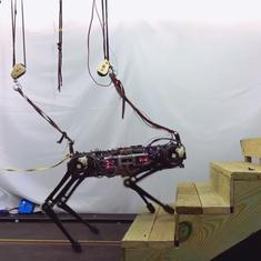 Watch: MIT's Cheetah 3 robot is 'blind', but it can climb stairs and get around effortlessly