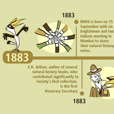 From EH Aitken to Salim Ali: An illustrated history of 133 years of Bombay Natural History Society