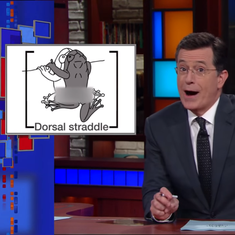 Watch: Stephen Colbert is excited about the sex lives of Indian frogs