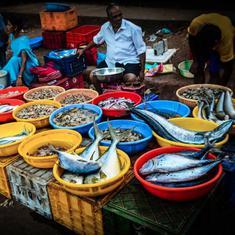 मनोहर पर्रिकर ने गोवा में दूसरे राज्यों से आने वाली मछली पर रोक लगाई