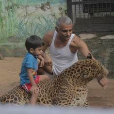 Censor board finally clears a documentary featuring captive animals ‒ cutting out the animals