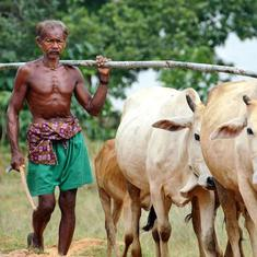 For farmers in Mahanadi basin, impact of climate change is a much bigger concern than water-sharing