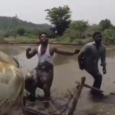 Watch: No one has ever taken the #InMyFeelings challenge quite this way. (Oxen are involved)