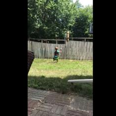 Watch: The internet cannot stop gushing over this viral video of a boy and dog playing catch