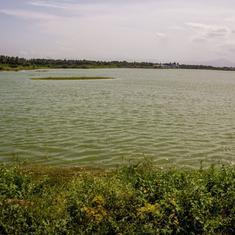 Tamil Nadu's choked urban wetlands will soon get protected status