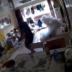 Watch: Electric scooter explodes inside a Beijing home while being charged, family escapes narrowly