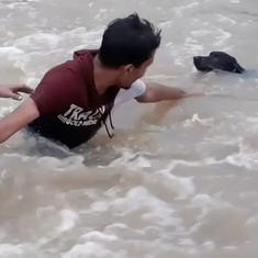 Watch: Humans form a chain to rescue a dog from being swept away in a flash flood