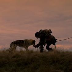 'Alpha' trailer: Watch the first tentative contact between human and wolf