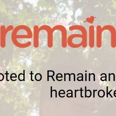 'Remainder' dating app to be launched for heartbroken Britons who voted against Brexit