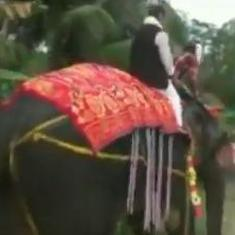 वीडियो : जब असम विधानसभा के नवनिर्वाचित उपाध्यक्ष को हाथी की सवारी भारी पड़ी