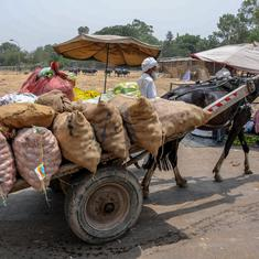 Punjab farmers to call off strike on June 6, says Bharatiya Kisan Union president