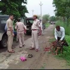 राजस्थान : अलवर में गो-तस्करी के शक में एक और व्यक्ति की पीट-पीट कर हत्या