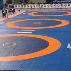 Wrestling: Andrew Cook, Indian women's foreign coach, left with no national wrestlers to train