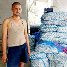As garlic prices drop, government intervention in Rajasthan, MP brings farmers little relief