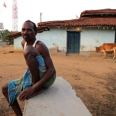 At Jharkhand site where cattle traders were lynched, both farmers and cattle struggle for water