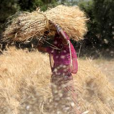 Food grain output will rise to a record 284 million tonnes in 2017-'18, says Ministry of Agriculture