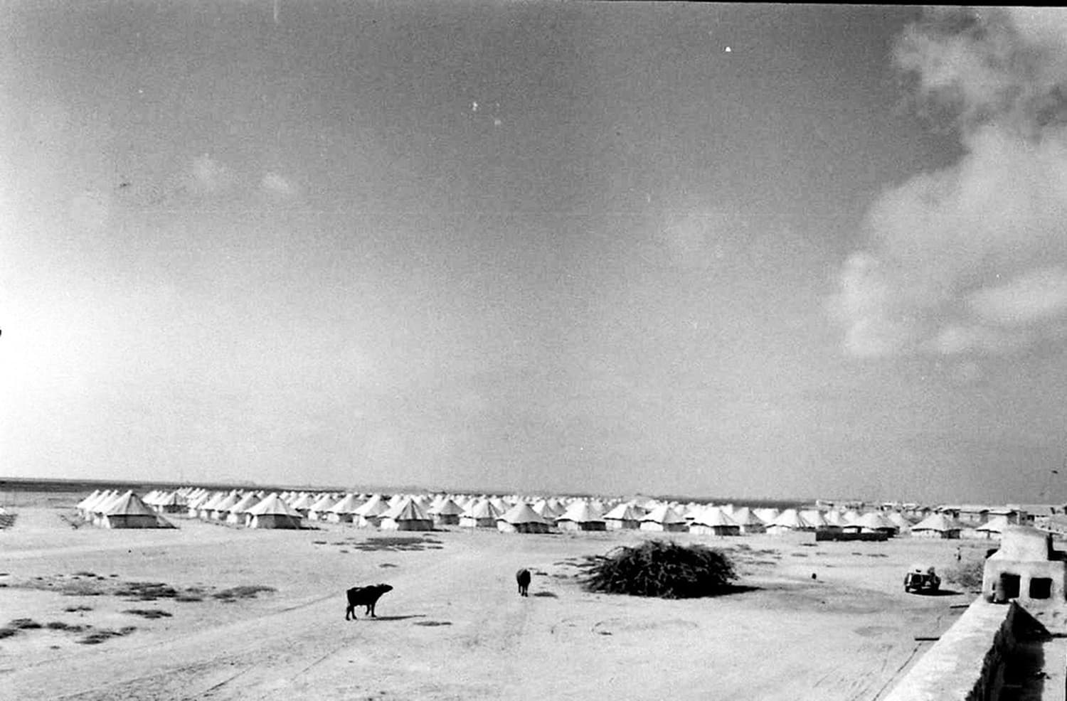Karachi, 1948: An open area dotted by hundreds of temporary camps, housing government officials who ran matters of the country and the city from inside these dusty tents. Source: Pakistan's Capital (A feature in 'LIFE' Magazine's June, 1948 issue).
