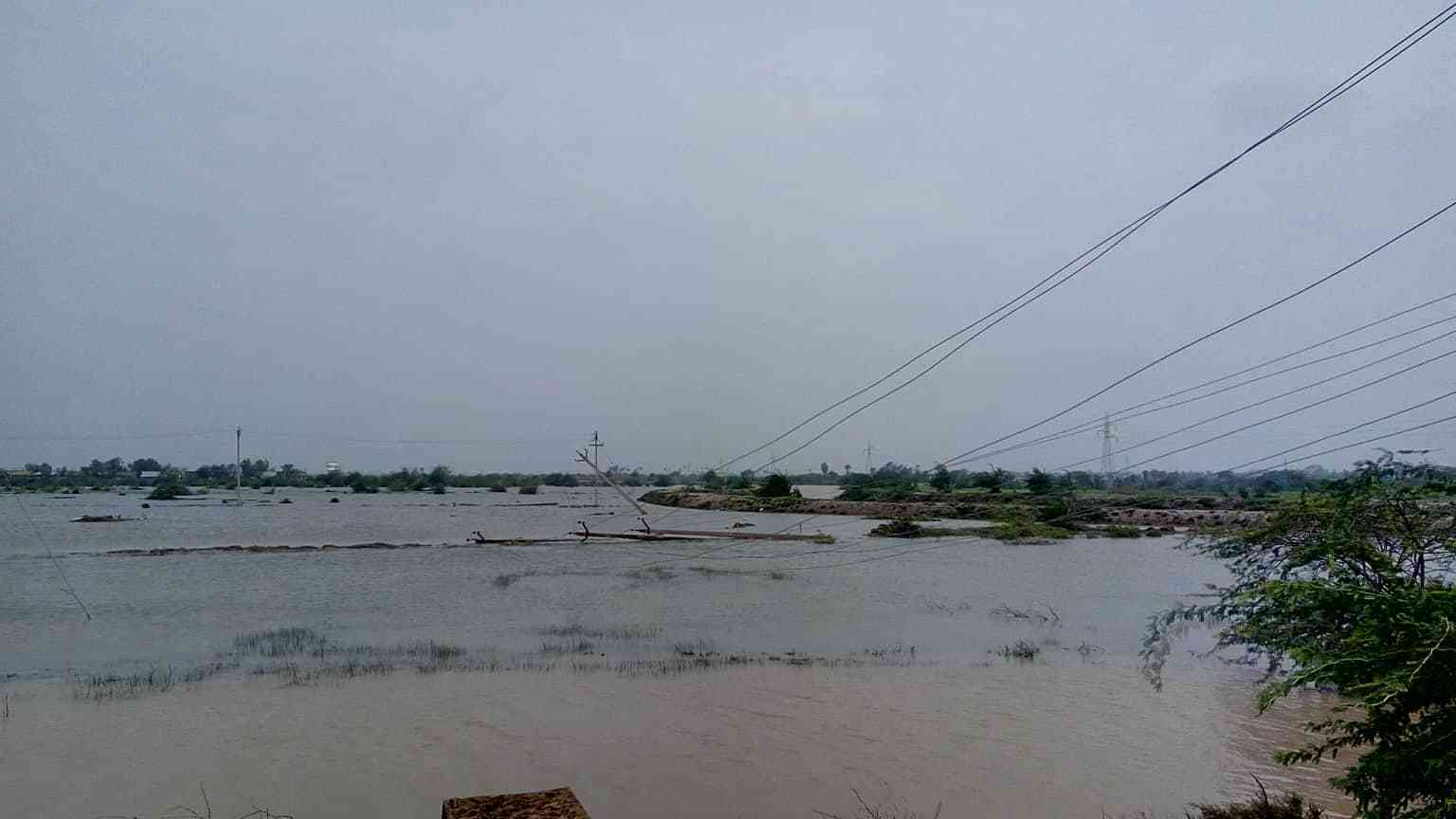 Damaged electrical poles in Nagapattinam (Photo credit: Revathi)