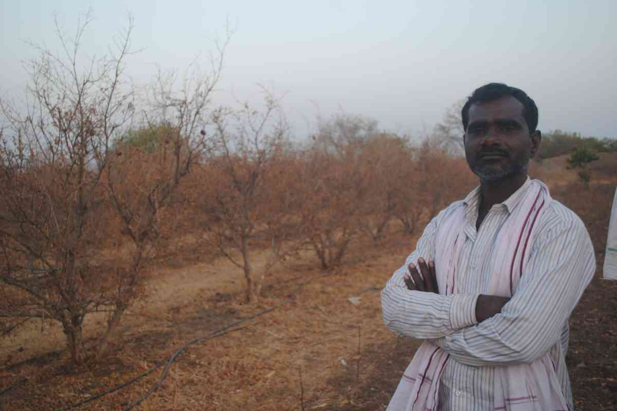 Ankush Bansode lost his grape and pomegranate crop spread over 3.5 acres in Karjat village, Jalna district. (Photo by Meena Menon.)