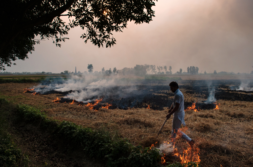 The sharing of new technologies, research, and policy interventions could help alleviate pollution caused by crop burning in both Indian and Pakistani Punjab. (Credit: Roberto Schmidt / AFP)