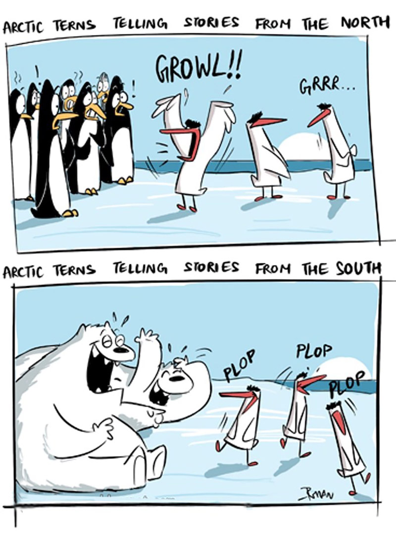 Arctic Tern Anecdotes: The cartoonist's humorous take on Arctic Terns who migrate over 70,000 km across the globe and their view of life at both the poles. Image credit: Rohan Chakravarty / Green