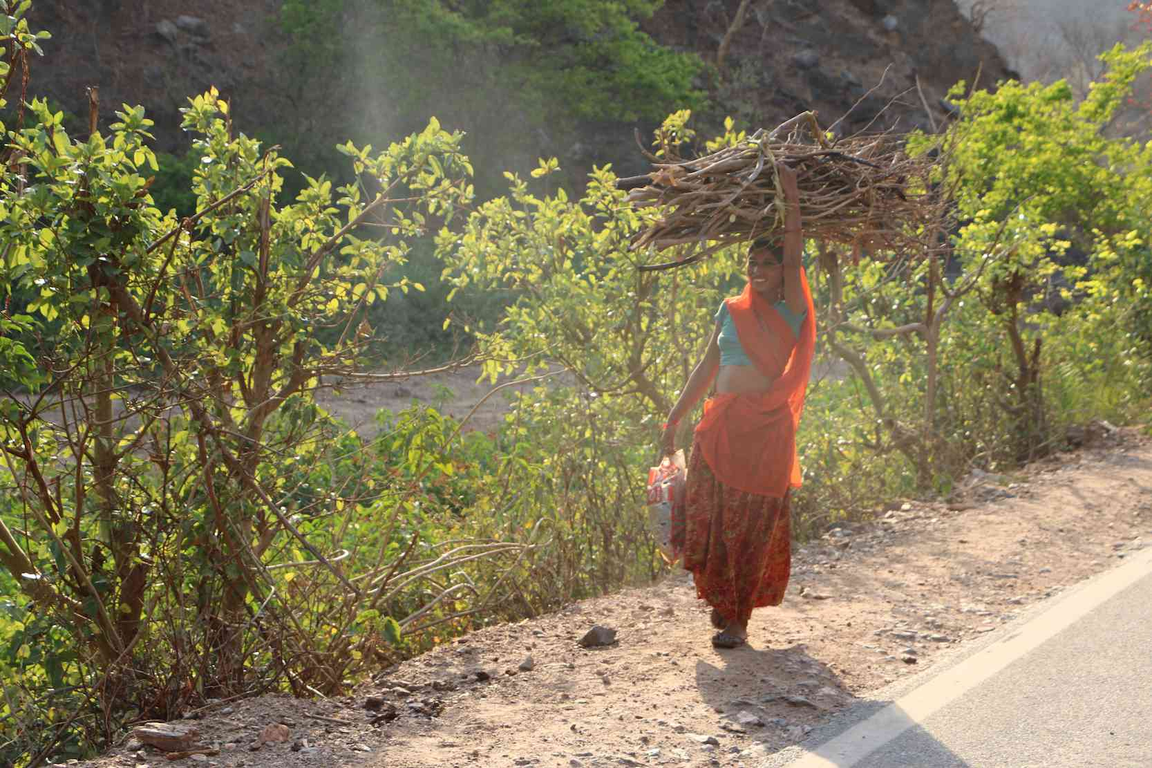 In many parts of Udaipur, Bhil Adivasis are still dependent on the forest for their basic needs.