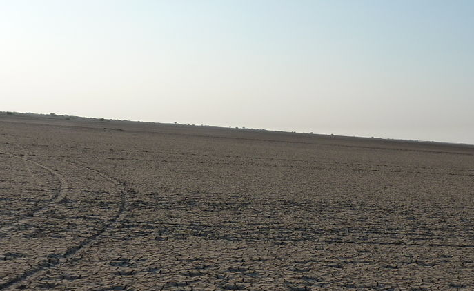 Kutch region's landscape before the horticulture boom. Photo credit: Wikimedia Commons