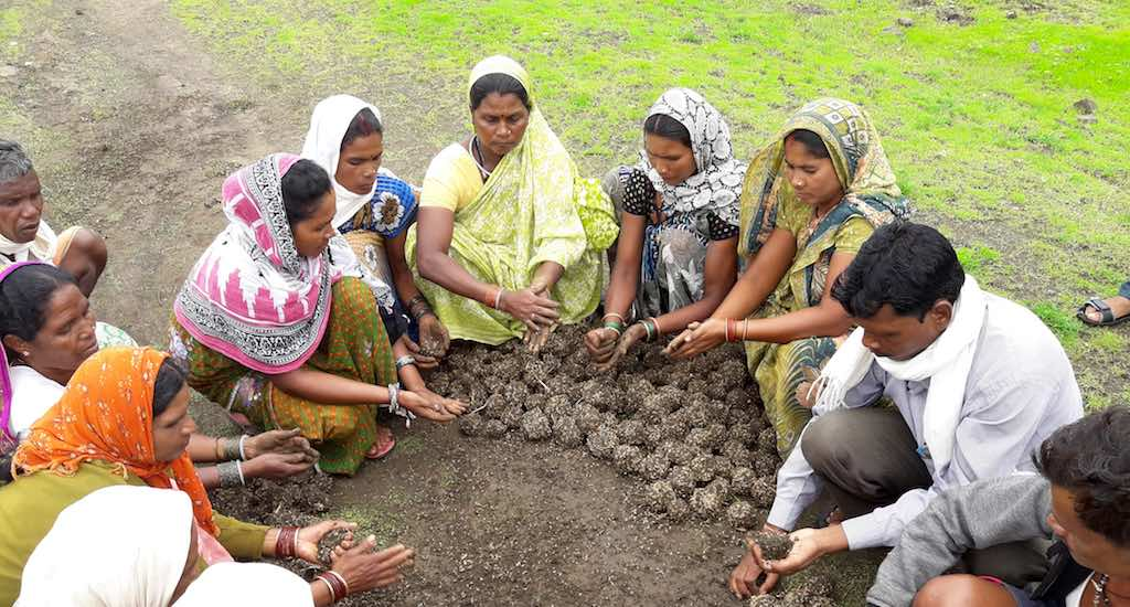 Villagers preparing seed balls to reclaim land cleared of lantana at Kharaudi village in Madhya Pradesh. Photo credit: Foundation for Ecological Security