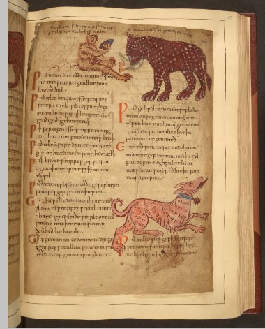 The elephant as it is drawn in 'Cotton MS Vitellius C III' (Image courtesy: British Library).