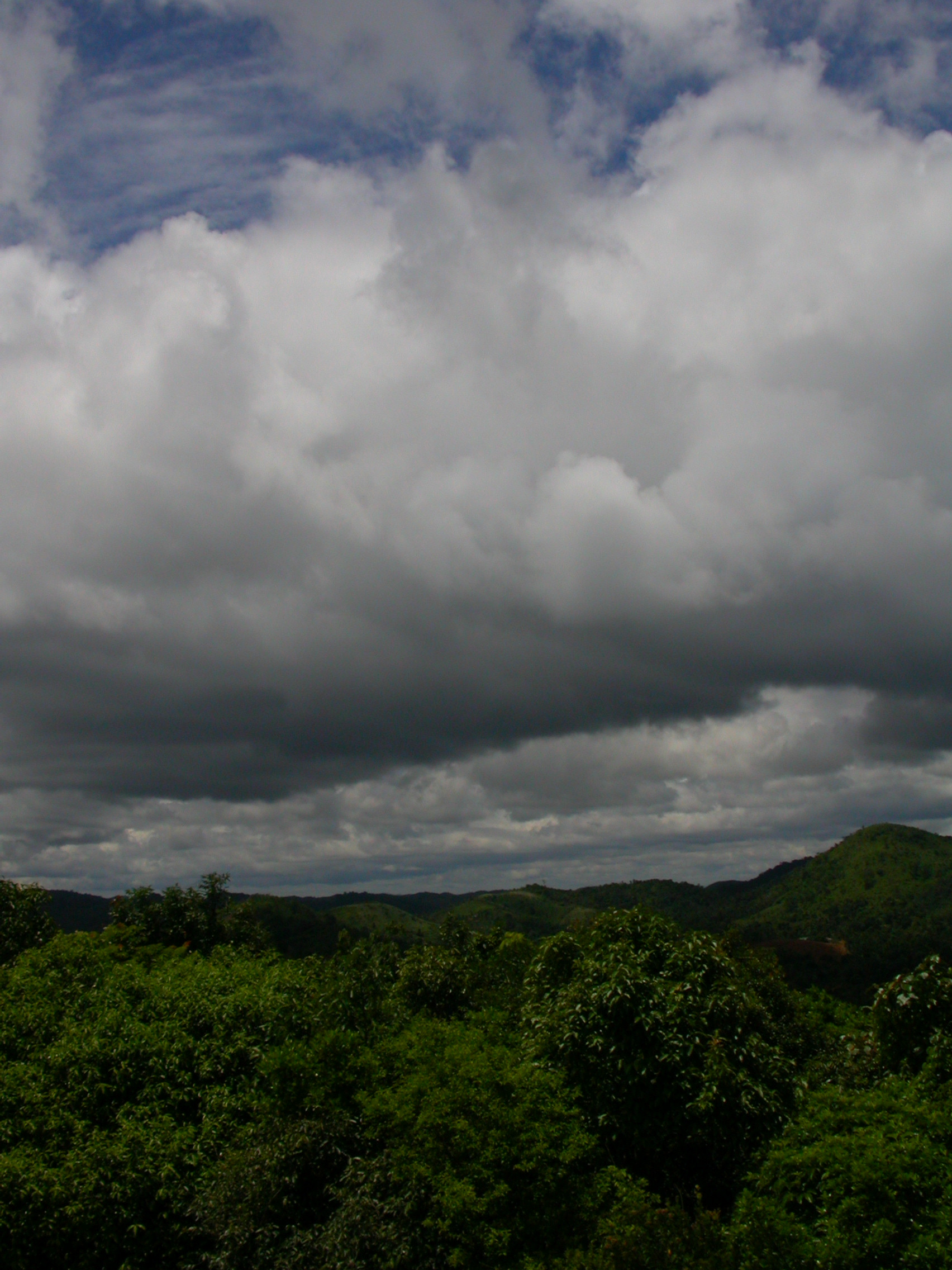 Monsoon clouds over Gurukula. Photo credit: Gurukula Botanical Sanctuary Archives