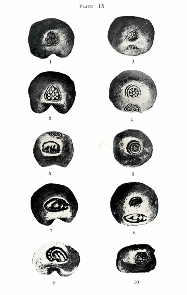 Examples of 18th-century Thai coins with marks representing lotus blossoms, elephants, conch shells. Reginald Le May, The coinage of Siam (Bangkok, 1932), plate IX. Photo credit: British Library, 07757.cc.21